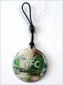 nfc disc tag